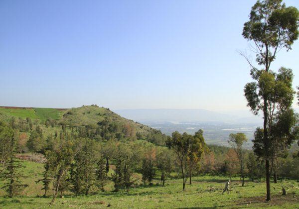 יער אשכול – מקום טוב לפיקניק… ולנוף