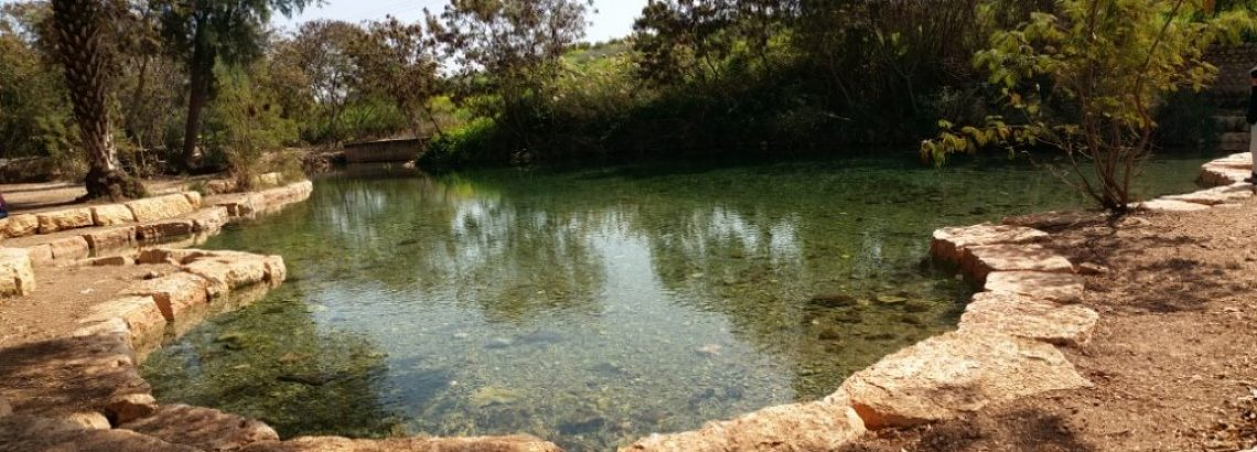 השביל הרטוב – טיול משפחתי בעמק המעיינות