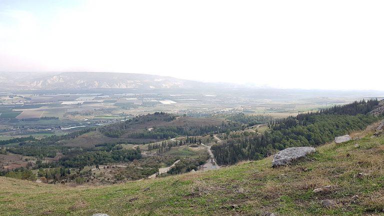 נוף יער מנחמיה