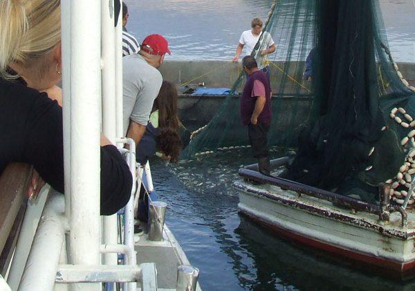 שייט דייג בנמל עין גב