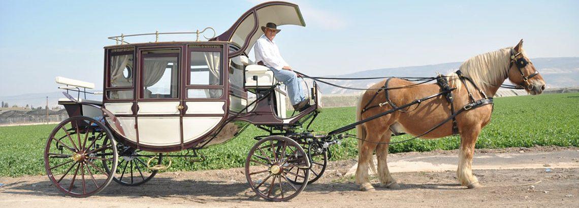 טיולי רכיבה ונהיגה בעמק הירדן