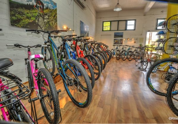 איב – אופניים מקצועיים