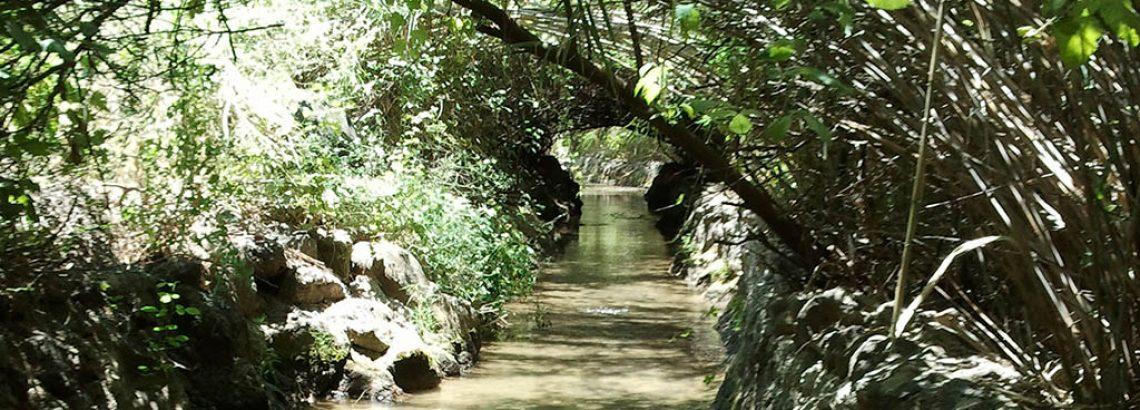 פארק הירדן – מים, ארכיאולוגיה וסרטים…