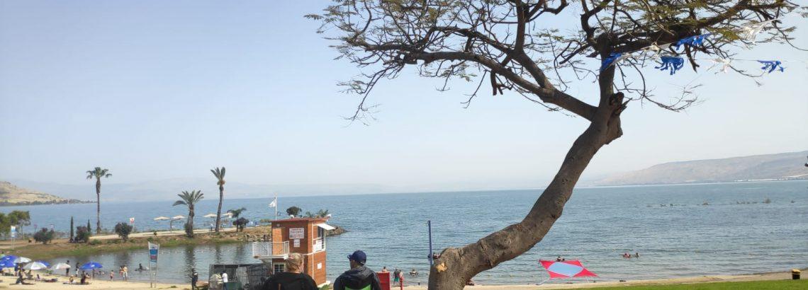 חופים מומלצים סביב הכנרת